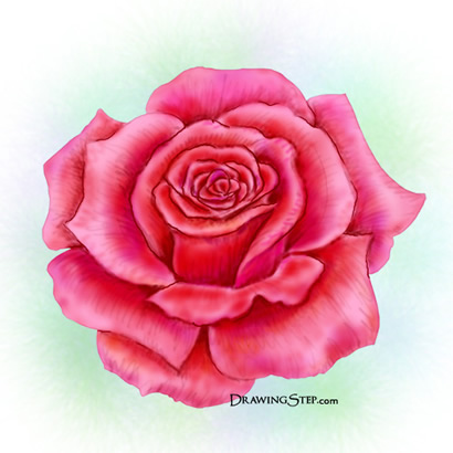 How to paint roses for How to paint a rose in watercolor step by step