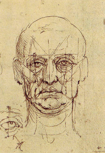 Leonardo da Vinci Drawing -face proportions