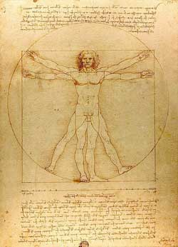 the human body proportions in the leonardo Da Vinci's Vitruvian man are but idealized guidelines because each individual person has got different shapes and proportions