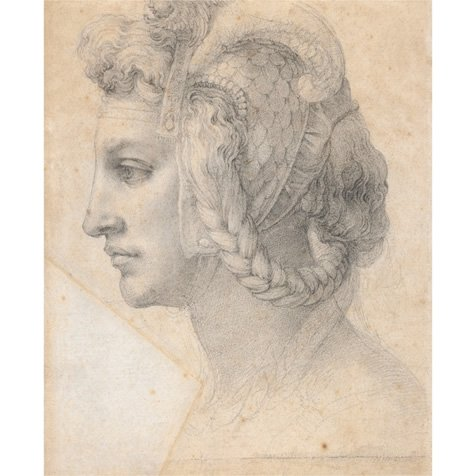 michelangelo drawing - a sophisticated head of a woman in profile